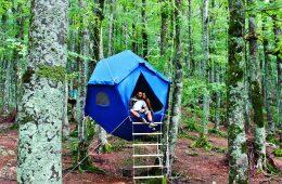 Eldar_Lab_Atomo_tree_tent