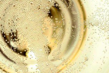 vinco_wine_bollicine_spumanti_abruzzo