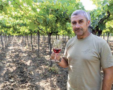 marchioli_wines_gianluca_marchioli_vigna_casalbordino_chieti